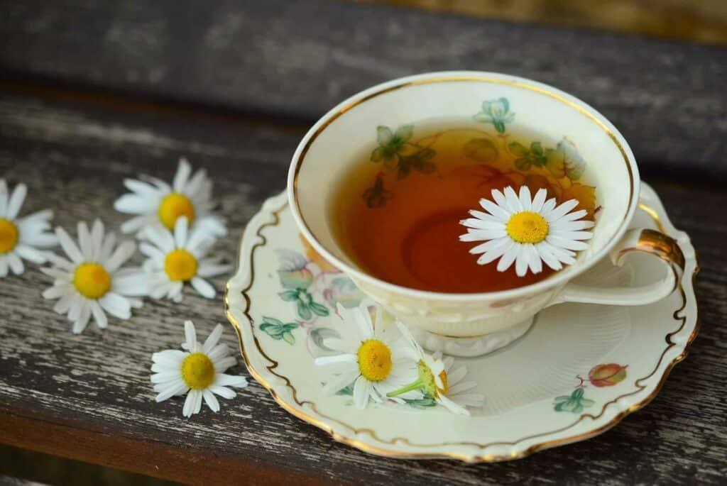 Gaensebluemchen_Tee