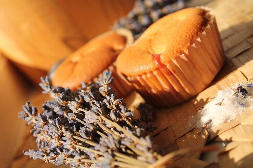 Zwei helle Muffins neben Lavendelsträußchen