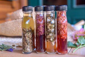 Vier verschiedene Blütenessige - selbst hergestellt