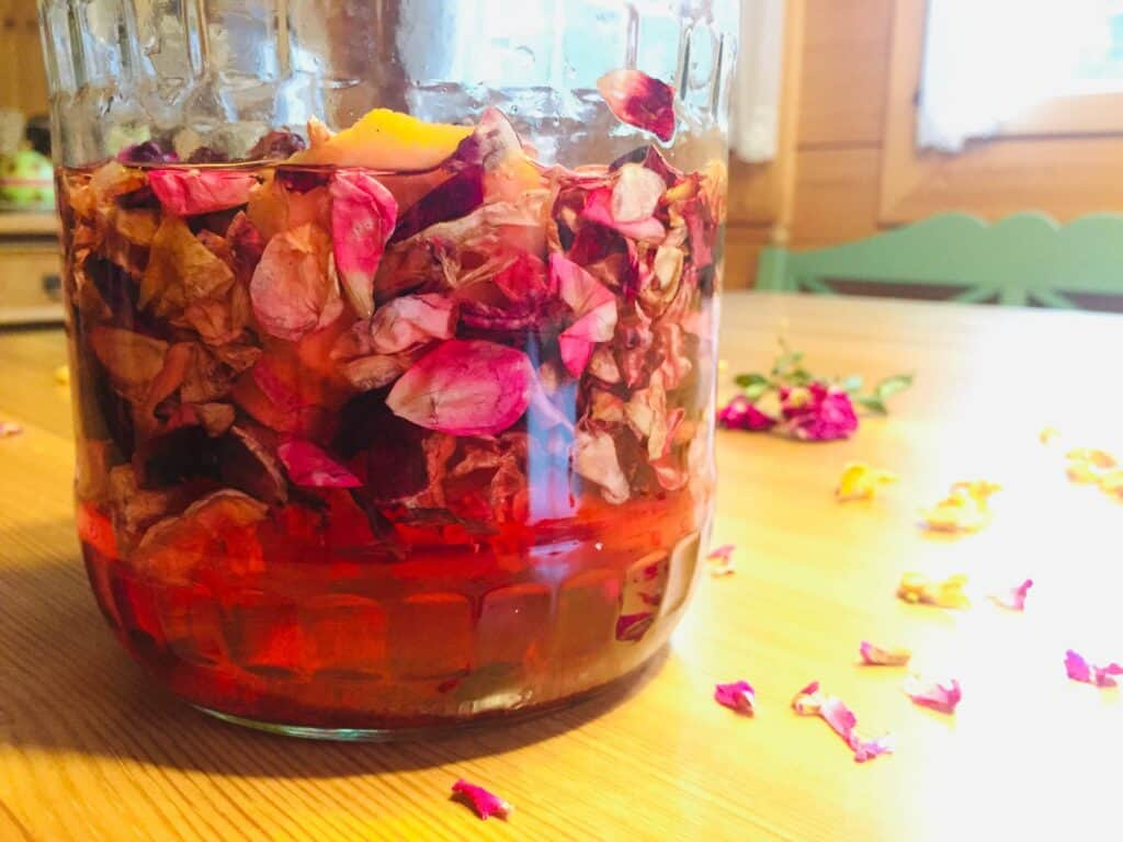Rosensirup selber machen